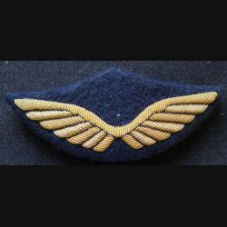 AIR : Insigne tissu de casquette d'officier de l'armée de l'air en cannetille 9 x 4 cm avec crochets plus fin