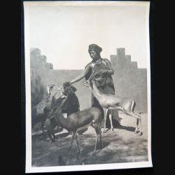 Photo argentique 18 x 24 cm sur la guerre d'Algérie femme donnant à manger aux gazelles