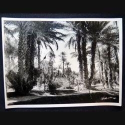 Photo argentique 18 x 24 cm sur la guerre d'Algérie la Palmeraie Béchar 1958