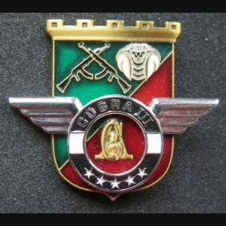 17° RGP : Unité COBRA III du 17° régiment du génie parachutiste Barkhane Niger Tchad 2015 MCPC numéroté