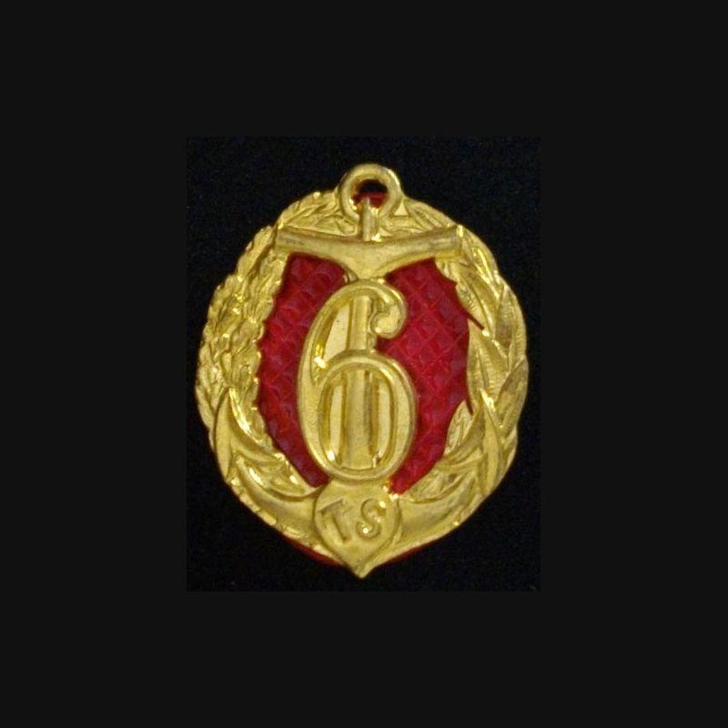Amicale Du 6° Régiment De Tirailleurs Sénégalais RTS Peint