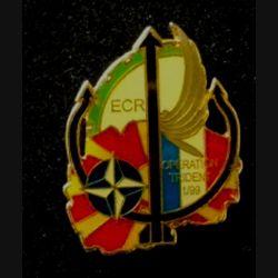 TRAIN : insigne de l'escadron de circulation routière de l'opération Trident 1/99 plastifié sans fabricant