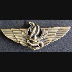 CPIS : insigne métallique du brevet moniteur de combat spécialisé CTE bronze