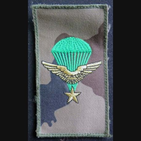 COMMANDO AIR : Insigne tissu des commandos de l'Air de dimension 6 x 11cm