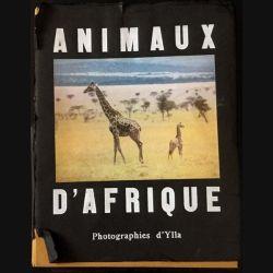 1. Animaux d'Afrique par Ylla aux éditions Robert Delpire