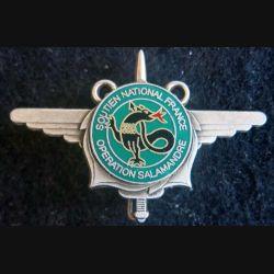Soutien national France de l'opération Salamandre Pichard Balme G.4726