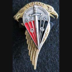 1° CHOC :  groupement d'instruction de spécialistes GIS du centre national d'entrainement commandos CNEC Delsart