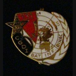 31° RG : 31° RÉGIMENT DU GÉNIE 331° CGDI BATINF BIHAC (L39)