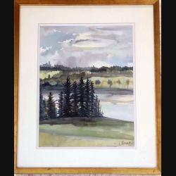Peinture à l'aquarelle de Svetlana Manen intitulée Sapins au bord du lac de dimension 46*38 sous verre