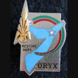 13° DBLE : insigne métallique de la 13° demi brigade de la légion étrangère Opération ORYX Balme Saumur numéroté