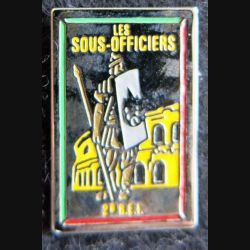 2° REI : Pin's des sous officiers du 2° régiment étranger d'infanterie  15 X 22 mm