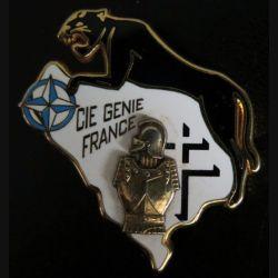 34° RG : compagnie génie france de la DMNSE du 34° régiment du génie Arthus Bertrand Paris  N° 043