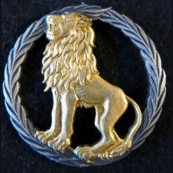 INCONNU : insigne métallique inconnu