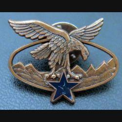 BQTM : Pin's du Brevet de qualification des troupes de montagne de fabrication Arthus Bertrand émail