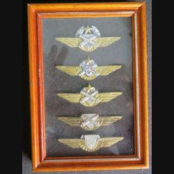 ALAT : cadre en verre comprenant 5 brevets de pilote de l'ALAT (C204)
