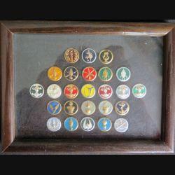 cadre en verre comprenant 25 insignes de col des armes de l'armée de terre 20 x 15 cm (C204)